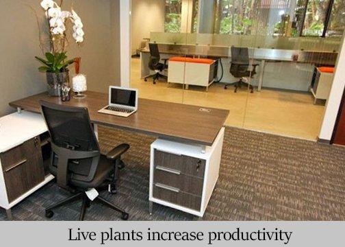 office_space_in_kochi